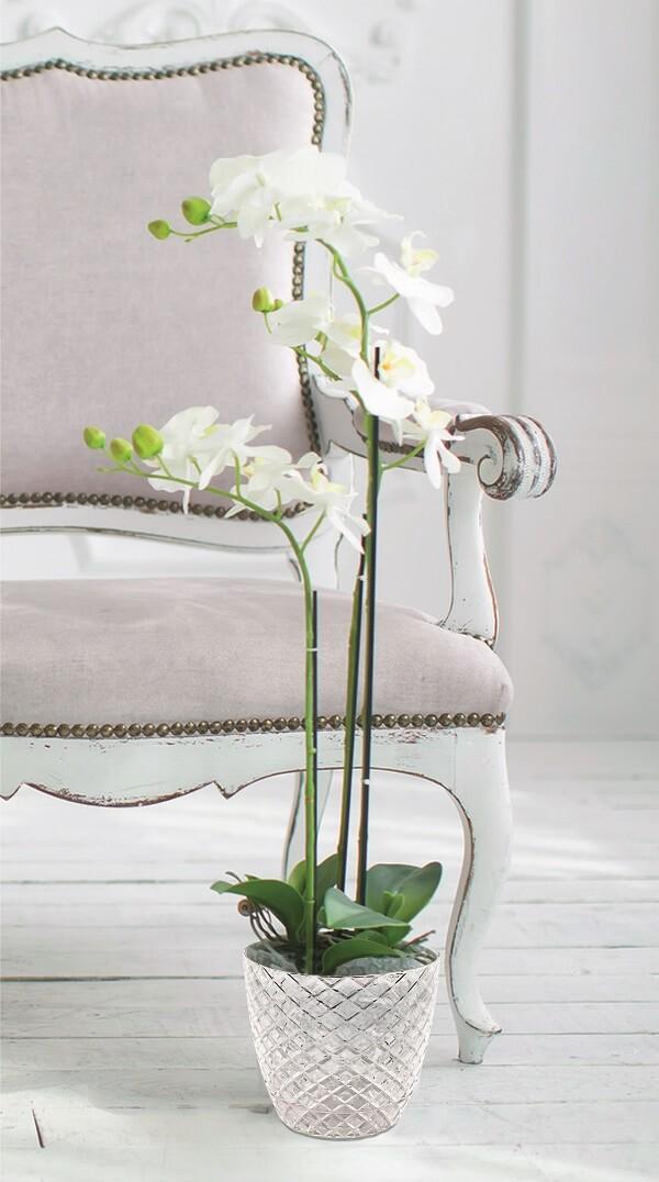 Orkide Saksı